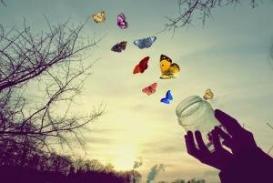 butterfly-free